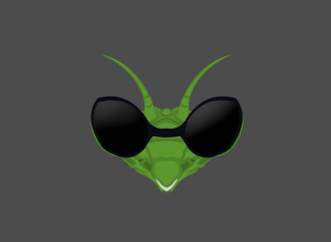Blindmantis team